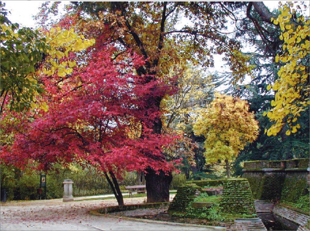 Parques y jardines hist ricos ruta de los museos del for Residencia el jardin madrid